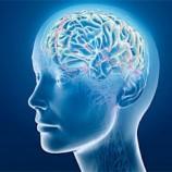 پایان نامه بررسی هوش هیجانی در رابطه با سلامت روانی